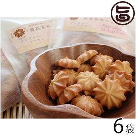 ギフト 愛荘玄米クッキーセット (ジンジャーシナモン) 30g×6袋 滋賀土産 滋賀 土産 関西 人気 贈り物 条件付き送料無料