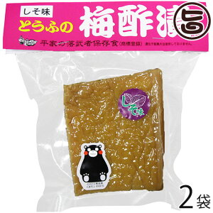 たけうち とうふの梅酢漬け×2袋 熊本県 九州 復興支援 健康管理 豆腐 送料無料