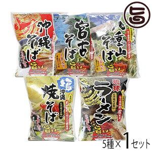 沖縄こだわりの生麺5種食べ比べセット 沖縄 人気 琉球料理 定番 土産 条件付き送料無料