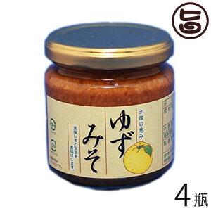 ゆずみそ 200g×4 高知県 四国 フルーツ 人気 調味料 お土産 味噌 送料無料