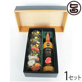 ギフト 贅熟ジュース&ゼリー詰合(マンゴー飲料&ゼリー) 沖縄 国産 フルーツ 人気 送料無料