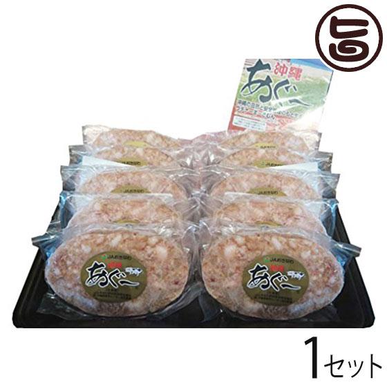 ギフト JAおきなわ あぐーハンバーグ ギフトセット 送料無料 沖縄 人気 希少 アグー 肉 専門店 贈り物にも