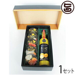 ギフト 贅熟 ジュース&ゼリー詰合 沖縄 国産 フルーツ 人気 送料無料