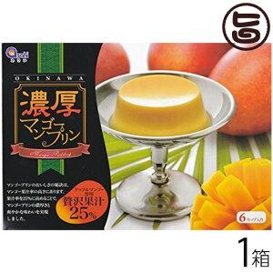 マンゴープリン アップルマンゴー使用 濃厚 贅沢果汁25% 6個入り×1箱 沖縄 土産 沖縄土産 定番 スイーツ お取り寄せ  送料無料