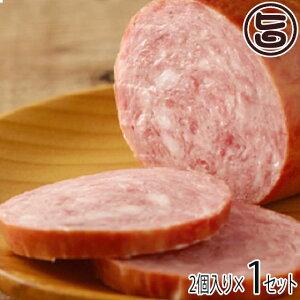 ギフト 南ぬ豚 特選ギフト (ランチョンミート) ×2セット 沖縄 国産 人気 肉 ギフトセット  送料無料