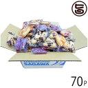 メガ盛り ちんすこう もりもり詰め合わせ70袋 送料無料 沖縄 土産 定番 人気