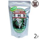 月桃茶 ティーパック(2g×25包入)×2袋 送料無料 沖縄 人気 健康茶 土産 健康管理
