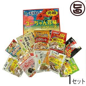 ジャーキー詰め合わせ(大袋10点セット)×1袋 沖縄 人気 土産 おつまみ 珍味 送料無料