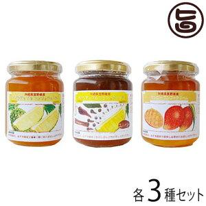 ぎのざジャム工房セレクト コンフィチュール3種セット 沖縄 土産 フルーツ 珍しい 送料無料