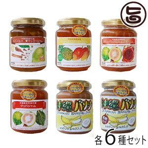 ぎのざジャム工房セレクト ジャム 6種セット 沖縄 土産 フルーツ 珍しい 送料無料