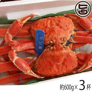 特選 浜ゆで 隠岐松葉ガニ 小 約600g×3杯 ボイル 茹で 松葉蟹 かに カニ ズワイガニ 鍋 ブランドガニ 送料無料