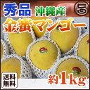 秀品 沖縄産 金蜜マンゴー 約1kg 2〜4個 送料無料 沖縄 フルーツ お土産