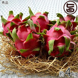 秀品 沖縄産 ピタヤ レッドドラゴンフルーツ 約4kg 沖縄 フルーツ お土産 条件付き送料無料