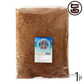 希少波照間産 純黒糖粉 1kg×1袋 送料無料 沖縄 土産 沖縄土産 人気 おすすめ 黒砂糖