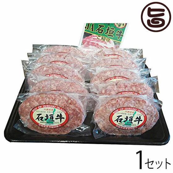 石垣牛ハンバーグ ギフトセット 110g×10個入 送料無料 ハンバーグ 石垣牛100% 沖縄 土産 人気 希少 石垣島 肉