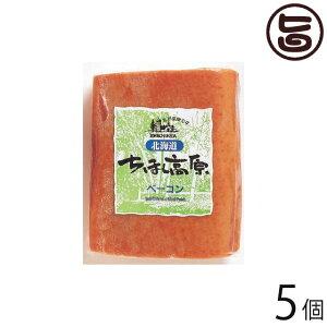 北海道 ちほく高原ベーコン 400g×5個 ブロック 加工肉 お土産 人気 ギフト 条件付き送料無料