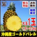 いっぺーあまさんゴールドバレル1玉約1.5〜2.0キロ送料無料沖縄産パイナップル沖縄の太陽をサンサンと浴びた無農薬有機栽培パインアップルフルーツ