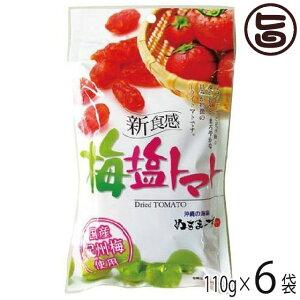 梅塩トマト 120g×6P 沖縄土産 沖縄 土産 人気 土産  送料無料