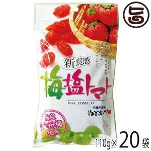 梅塩トマト 110g×20P 沖縄土産 沖縄 土産 人気 土産 送料無料