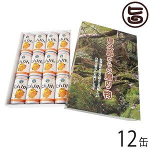 ギフト 屋久島からの贈り物 たんかんジュース 190ml×12缶 お土産 贈答品 条件付き送料無料