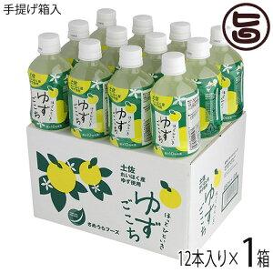 ほっとひといき ゆずごこち 箱(12本入り) 高知県 土佐 れいほく産 柚子果汁 はちみつ 蜂蜜  条件付き送料無料