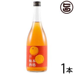紀州石神の本格梅酒 720ml×1本 梅酒 瓶 完熟南高梅 和三盆糖使用 無添加 条件付き送料無料