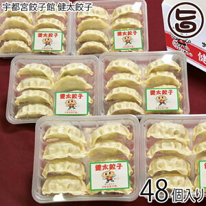 健太餃子 8個入り×6パック (48個入り) 栃木 土産 冷凍 宇都宮餃子館 お店の味をご家庭で 送料無料
