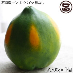 石垣産 サンゴパパイヤ 種なし 約700g×1個 果汁たっぷり 糖度13.8度 香り高く繊細な味わい フルーツ 沖縄 土産 果物  送料無料