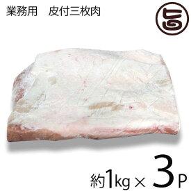 【業務用】 皮付三枚肉 精肉 3kg 条件付き送料無料 沖縄料理に欠かせない豚バラ肉 角煮 ラフテー 沖縄そば チャンプルーにどうぞ 沖縄 人気 肉 ブロック ばら肉 豚肉