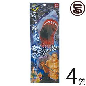鮫ジャーキー 黒胡椒味 18g×4袋 珍味 おつまみ スパイシー 珍味 おつまみ スパイシー 土産 低カロリー 高たんぱく 低脂肪 DHA コラーゲン 送料無料