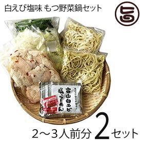 サンフーズ 白エビ塩味 もつ野菜鍋 2〜3人前×2セット 〆らーめん入り 白エビ塩味スープ 麺家いろは監修 レシピ付 条件付き送料無料