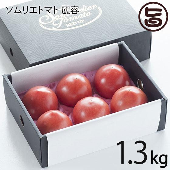 レッドアップ とまと ソムリエトマト 麗容 1.3kg 条件付き送料無料 熊本 ギフト プレゼント 復興支援