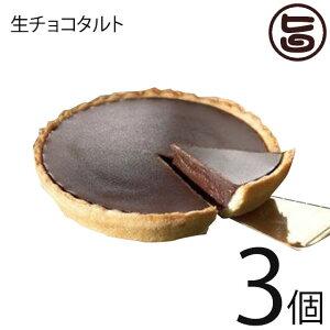 あそりんどう 生チョコタルト 直径約12cm(190g)×3個 熊本 九州 阿蘇 濃厚 ケーキ 人気 復興支援  条件付き送料無料