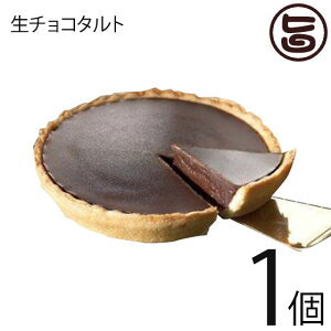 あそりんどう 生チョコタルト 直径約12cm(190g)×1個 熊本 九州 阿蘇 濃厚 ケーキ 人気 復興支援  条件付き送料無料