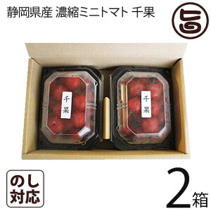 ギフト 千果 静岡県産 濃縮ミニトマト ちか 200g×2P×2箱 産直 お取り寄せ ギフト 贈り物 条件付き送料無料
