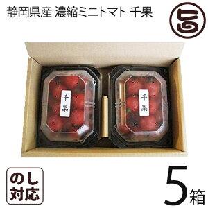ギフト 千果 静岡県産 濃縮ミニトマト ちか 200g×2P×5箱 産直 お取り寄せ ギフト 贈り物 条件付き送料無料