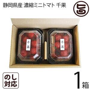ギフト 千果 静岡県産 濃縮ミニトマト ちか 200g×2P×1箱 産直 お取り寄せ ギフト 贈り物 条件付き送料無料