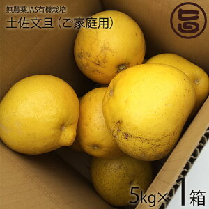 文旦 無農薬JAS有機栽培 5kg×1箱 ご家庭用 ひよこ皮むき器付 条件付き送料無料