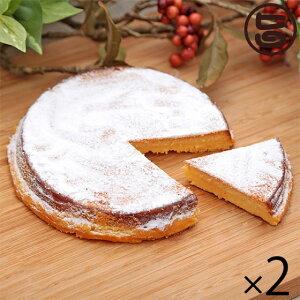 ホワイトデー お返し あそりんどう カマンベール チーズケーキ×2 お土産 ギフト 誕生日 お祝い  条件付き送料無料