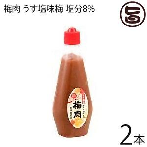 濱田 梅肉 うす塩味梅 (塩分8%) 340g×2本 梅肉ソース 梅肉チューブ クエン酸 リンゴ酸 マツコの知らない世界 条件付き送料無料
