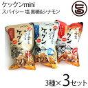 ケックンmini スパイシー 塩 黒糖&シナモン 60g×3種×3セット沖縄伊江島小麦チップス クセになる旨さ! 林修の今でし…