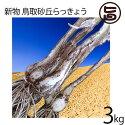 新物鳥取砂丘らっきょう3Kg土つきGI認定植えて良し食べて良し送料無料