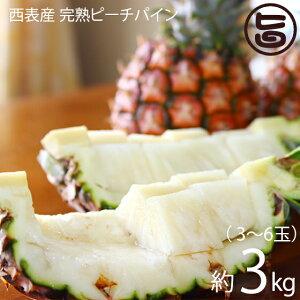 西表産 完熟ピーチパイン 3〜6玉 約3kg 池村農園 ほんのり桃の香り 高糖度 低酸味 別名ミルクパイン ソフトタッチ 送料無料