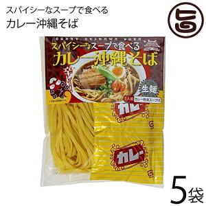 琉津 スパイシーなスープで食べるカレー沖縄そば 118g×5P 生麺 スープ付き お手軽 便利 沖縄 土産 珍しい 送料無料