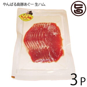 フレッシュミートがなは やんばる島豚あぐー ≪黒豚≫ 生ハム 100g×3P フレッシュミートがなは 沖縄 土産 アグー あぐー 貴重 肉 人気  条件付き送料無料