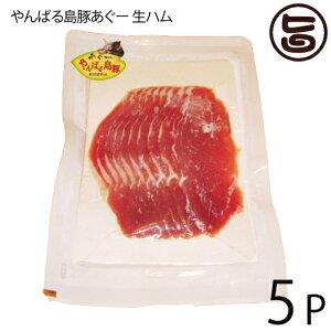 フレッシュミートがなは やんばる島豚あぐー ≪黒豚≫ 生ハム 100g×5P フレッシュミートがなは 沖縄 土産 アグー あぐー 貴重 肉 人気 条件付き送料無料