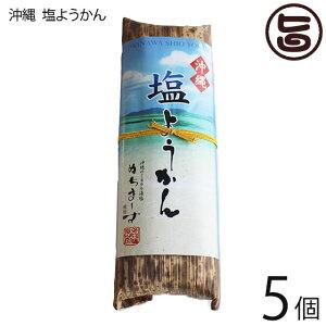 琉民 沖縄 塩ようかん 220g×5本 上品な甘さがおすすめ 沖縄 土産 人気 送料無料
