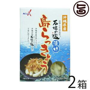 南都物産 沖縄県産 石垣の塩漬け 島らっきょう 60g×2箱 炒め物料理やお酒のおつまみに 人気 お土産 送料無料