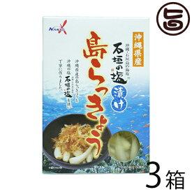 南都物産 沖縄県産 石垣の塩漬け 島らっきょう 60g×3箱 炒め物料理やお酒のおつまみに 人気 お土産 送料無料