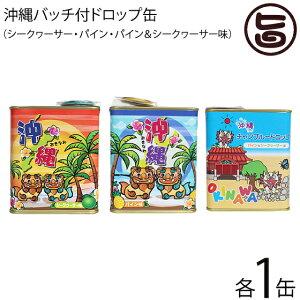 ジーエー ドロップ缶 3種×各1缶 沖縄 土産 人気 ドロップス おまけ付き 缶 トロピカル キャンディ  送料無料